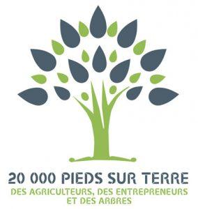 Animation des réseaux d'entreprises et lancement de 20 000 Pieds sur Terre avec La Courbe Verte